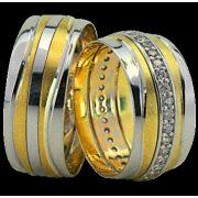 ARANY Bicolor Karikagyűrű – TS1212