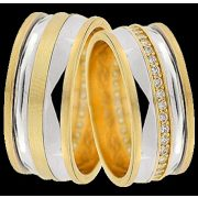 ARANY Bicolor Karikagyűrű – TS1260B