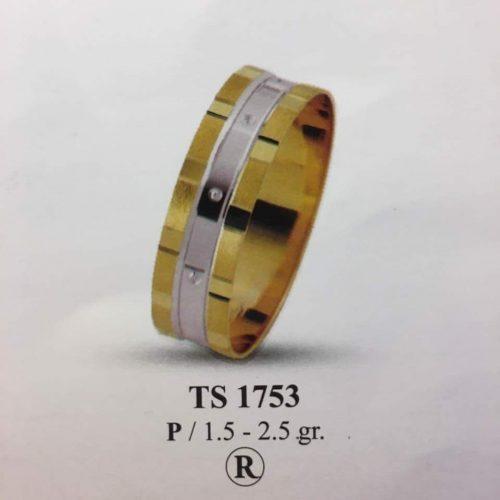 ARANY Bicolor Karikagyűrű – TS1753