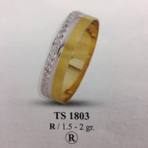 ARANY Bicolor Karikagyűrű – TS1803