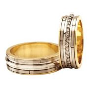 ARANY Bicolor Karikagyűrű – TS301