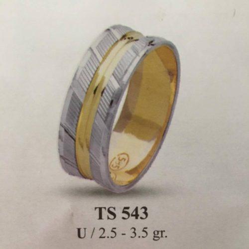 ARANY Bicolor Karikagyűrű – TS543