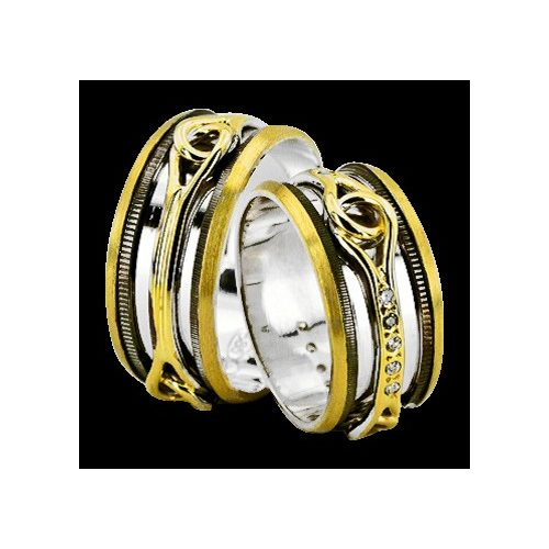 ARANY Bicolor Karikagyűrű – TS938