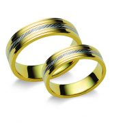 ARANY Karikagyűrű – FORMIA